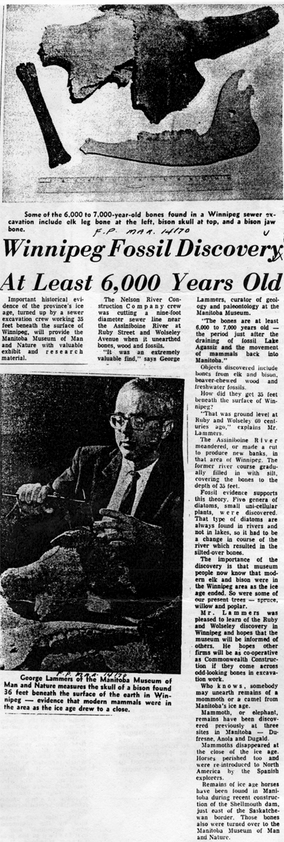 This article from the Winnipeg Free Press of March 14th, 1970, shows how exciting the Ruby Street find was considered at the time!