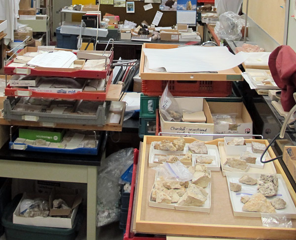 In the paleontology lab, trays of fossils await examination under the microscope.