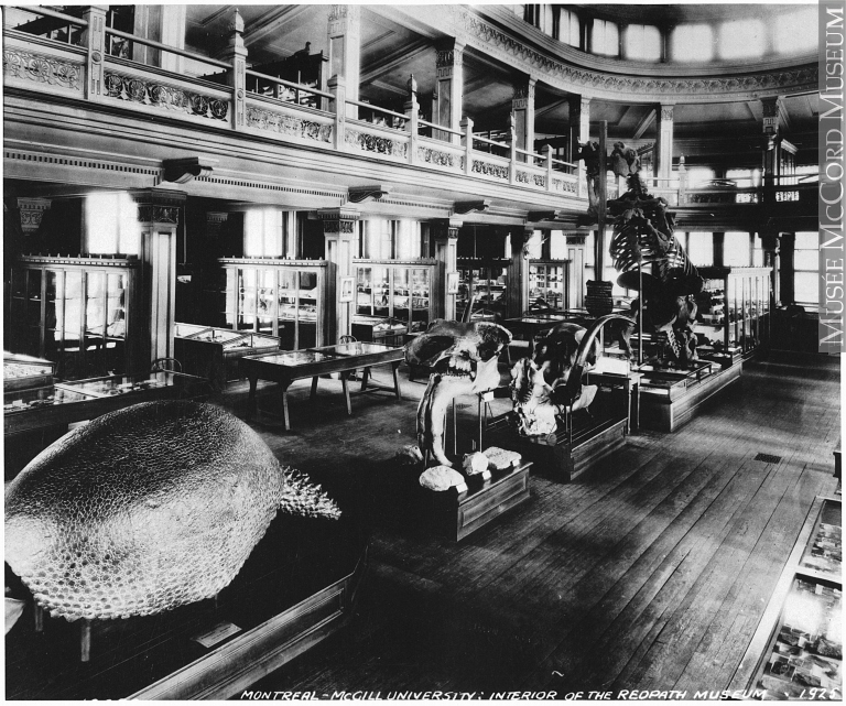 The Redpath in 1925, showing both the glyptodont and the Megatherium.