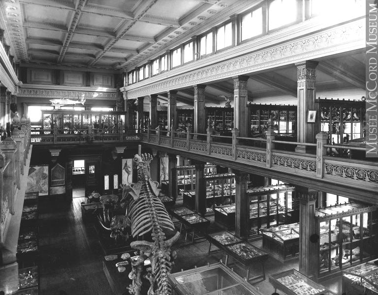 (photo: McCord Museum)