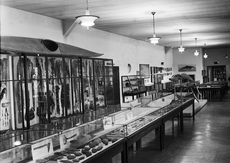 Some of the exhibits at the old Manitoba Museum