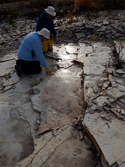 Michael and me working along a damp bedrock surface. (photo: Dave Rudkin, Royal Ontario Museum)