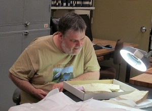 Michael Cuggy contemplates a eurypterid specimen.