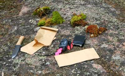 Moss voucher specimens awaiting documentation.