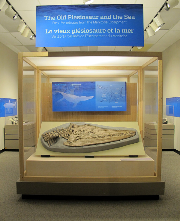 plesiosaur exhibit entrance