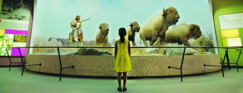 Girl and bison