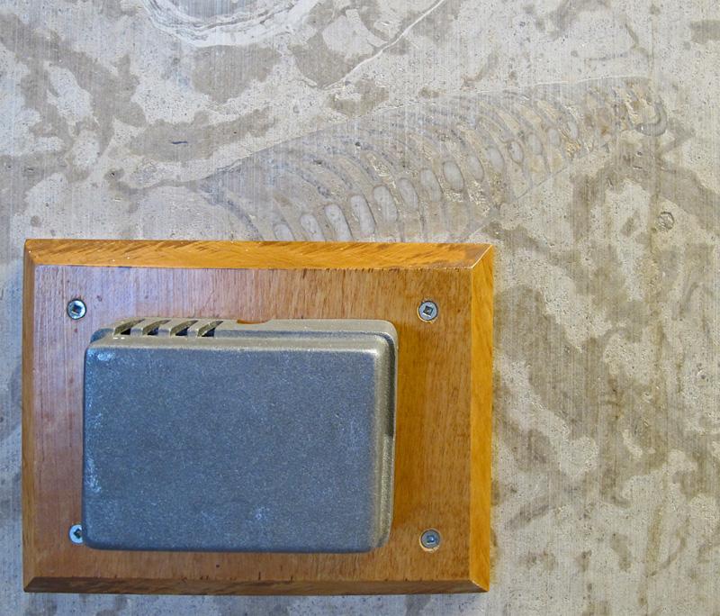 Cephalopod thermostat