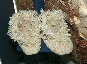 An image of shoes made out of corn husks.