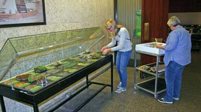 Museum Conservators Carolyn and Ellen helped with the set up of the moss exhibit.