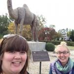 Glenboro Camel