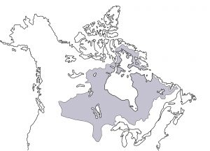 Rough outline of Rupert's Land (grey area).