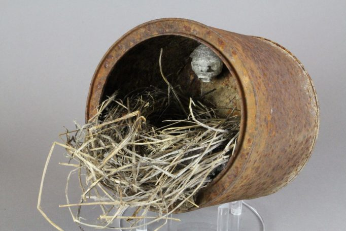 21. 1-21-503 Song Sparrow Nest (2)