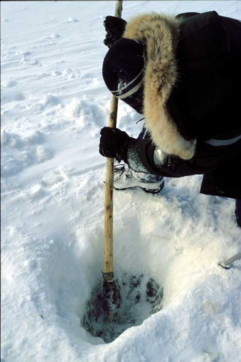 Experimental Archaeology Chopping hole in ice