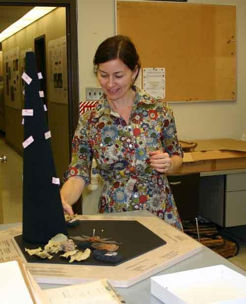 Exhibit Designer, Stephanie Whitehouse, testing the case layout.