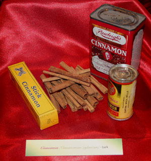 """Cinnamon sticks and old spice jars from the 2004 exhibit """"A Natural History of Christmas Foods."""""""