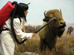 Lisa vacuums a bison