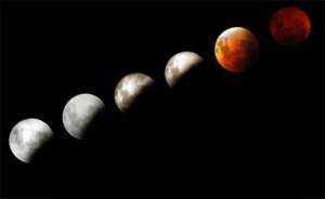 Lunar eclipse. Image credit: Sean Workman.